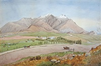 central otago settlement by christopher aubrey