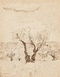 árbol by francisco san josé