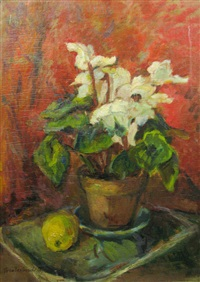 white cyclamens and quinces by vera veslovschi nitescu