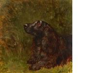 a field spaniel by maud earl
