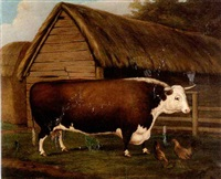 prize bull in a farmyard by h.j. quintin