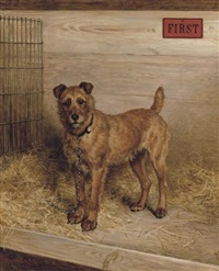 """first"" - an irish terrier by frank paton"