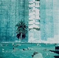 terrain vague, tanger by yto barrada