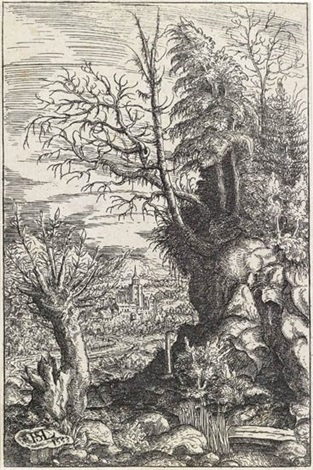 landscape with a pollard willow by hans sebald lautensack
