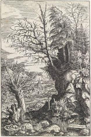 landscape with a pollard willow by hans sebald lautensack