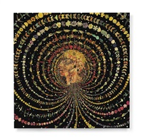 breathing head by fred tomaselli