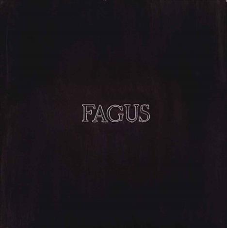 fagus by alighiero boetti