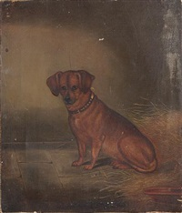 a seated dachshund by edwin (of bath) loder