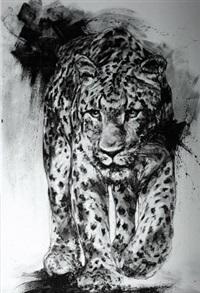 léopard by franck lesieur