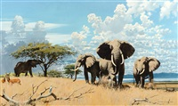 elephants by keith shackleton