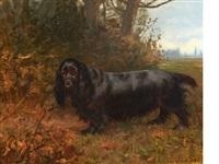 field spaniel by maud earl