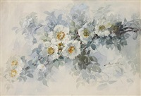 white roses by franz b. aulich