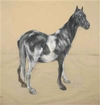 horse by nicola hicks