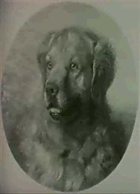 hundeportrait by sigmund l' allemand