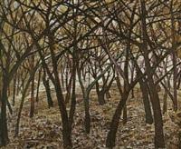 bosque by ramon llovet