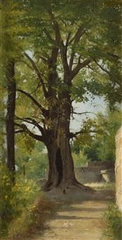 l'arbre by edouard cabane