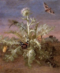 a thistle laiden with insects including butterflies, a   dragonfly & a grasshopper by margarethe de heer