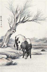 牛 立轴 设色纸本 by ma jin