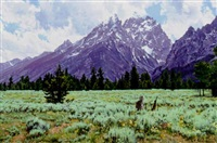 jeweled sage meadow by marlin adams