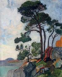 pins sur la crique dans le midi by maurice retif