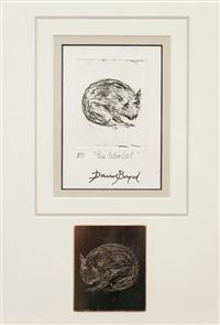 the wombat by david boyd