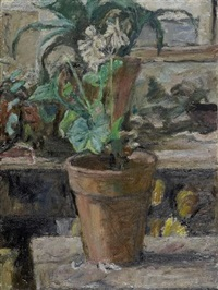 fiori nel vaso by enzo faraoni