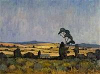 swartland landscape by pieter van heerden
