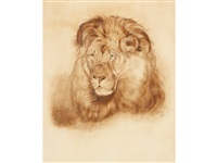 head study of a male lion by william powell frith