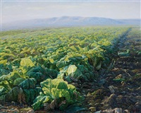 chinese cabbage series by xue zhiguo