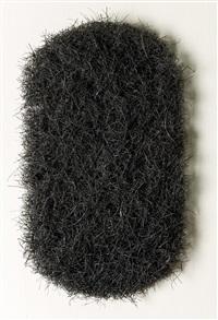 hair blp by richard artschwager