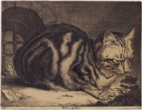the large cat by cornelis de visscher