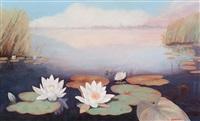 water lilies in the loosdrechtse plassen lake by dirk smorenberg