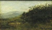 landscape (to piatra) by dimitrie mihailescu