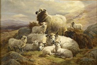 sheep on a hillside by william r.c. watson