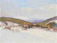 vinter i åre by anton genberg