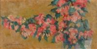 kwiaty by zofia albinowska-minkiewicz