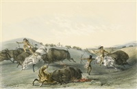 buffalo hunt by george catlin