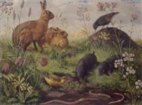 life in the meadow (october) by john leigh-pemberton