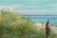 a beach scenery with lyme grass by laurits andersen ring