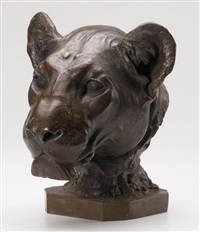 head of lioness by friedrich ernst wolfrom