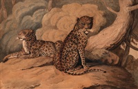 a pair of leopards; a pair of lions (2 works) by william samuel howitt