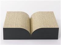 book by richard artschwager