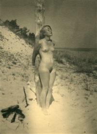 nu sur la plage by heinz von perckhammer