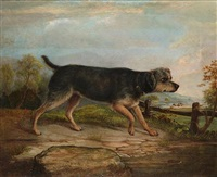 terrier in landscape by c. burridge