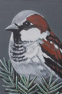 sparrow by rajan krishnan