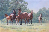 mares and foals by katy sodeau