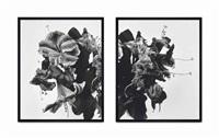 from close to range (diptych) by nobuyoshi araki