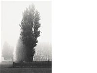 selected images of england (7 works) by michael kenna
