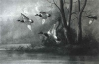 mallards in flight over mississippi marsh by m. p. elliott