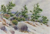 landscape with trees and rocks by j. stanford perrott